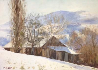 audibert-artistes-peintres-robin-005